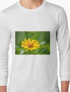 Yellow Blossoms Long Sleeve T-Shirt