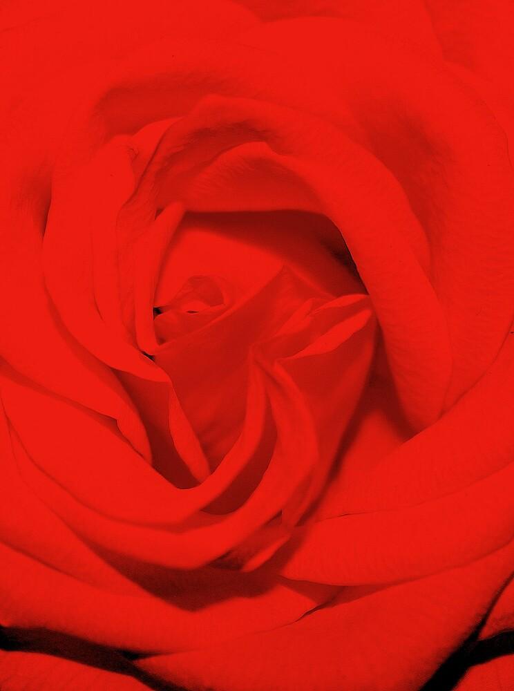Be my valentine by ioandavies