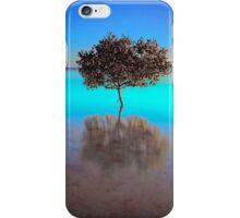 Aquamarine Morning - Victoria Point Qld Australia iPhone Case/Skin