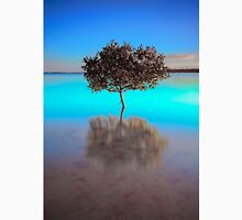 Aquamarine Morning - Victoria Point Qld Australia Unisex T-Shirt