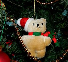 Tree Ornament-2    ^ by ctheworld