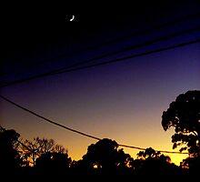 night setting by Ferguson