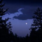Twas the Night Before the Super Moon by Corri Gryting Gutzman