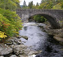 Invermoriston Bridge by Alex Graham