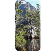 Artists Pool Cradle Mountain iPhone Case/Skin