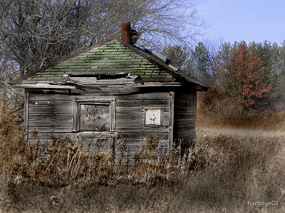 Abandoned by hammye01