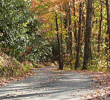 October Road by Sherri Hamilton