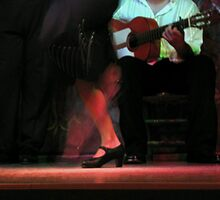 Flamenco stomp by CynthiaC