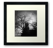 release the bats Framed Print