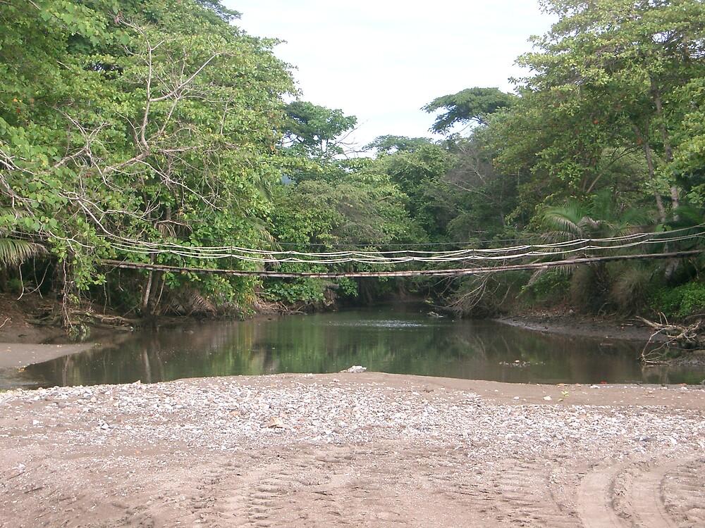 Bridge to... Wait that's taken... by Aqua8