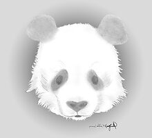 Panda by schmeer