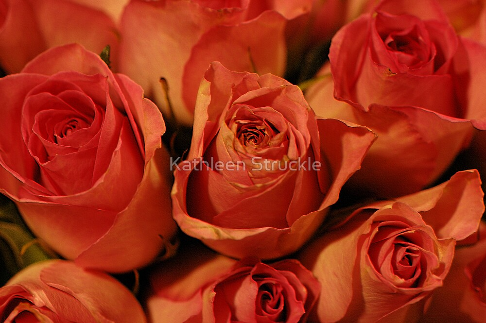Hot Kiss Roses by Kathleen Struckle