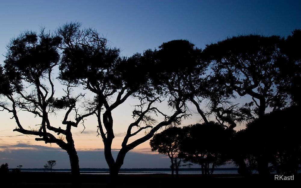 Twilight - Fort Fisher by RKastl