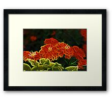 Pretty In Paint Framed Print