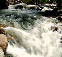 Rapids seen Slowly by J. D. Adsit