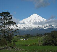 Mt Taranaki     North Egmont by PeterJF
