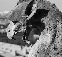 Weathered Gargoyle by MichaelJP
