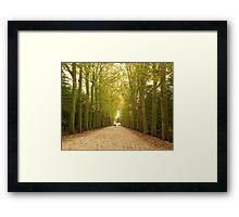 Autumn Pathway Framed Print