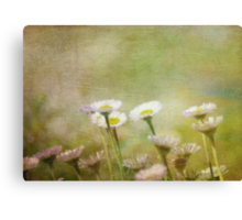From Childhood's Hour Canvas Print