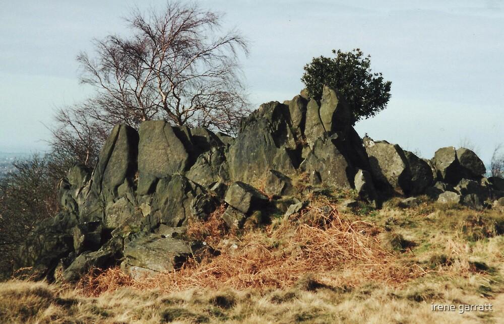 A rocky scene by irene garratt