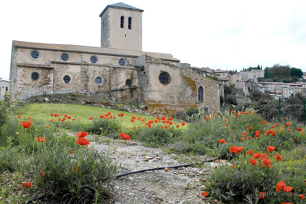 Poppies at Church by Caprice Sobels