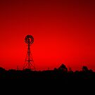 Windmill at dusk by Duncan Waldron