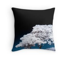 Celestial Sphere Throw Pillow
