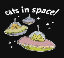 spacecats by Matt Mawson