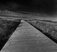 Boardwalk by EvaMcDermott