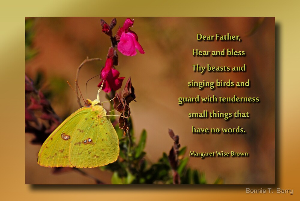 Nature Lover's Prayer by Bonnie T.  Barry