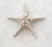 White Starfish by Elena Ray
