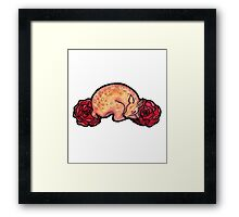 Fawn and Roses Framed Print