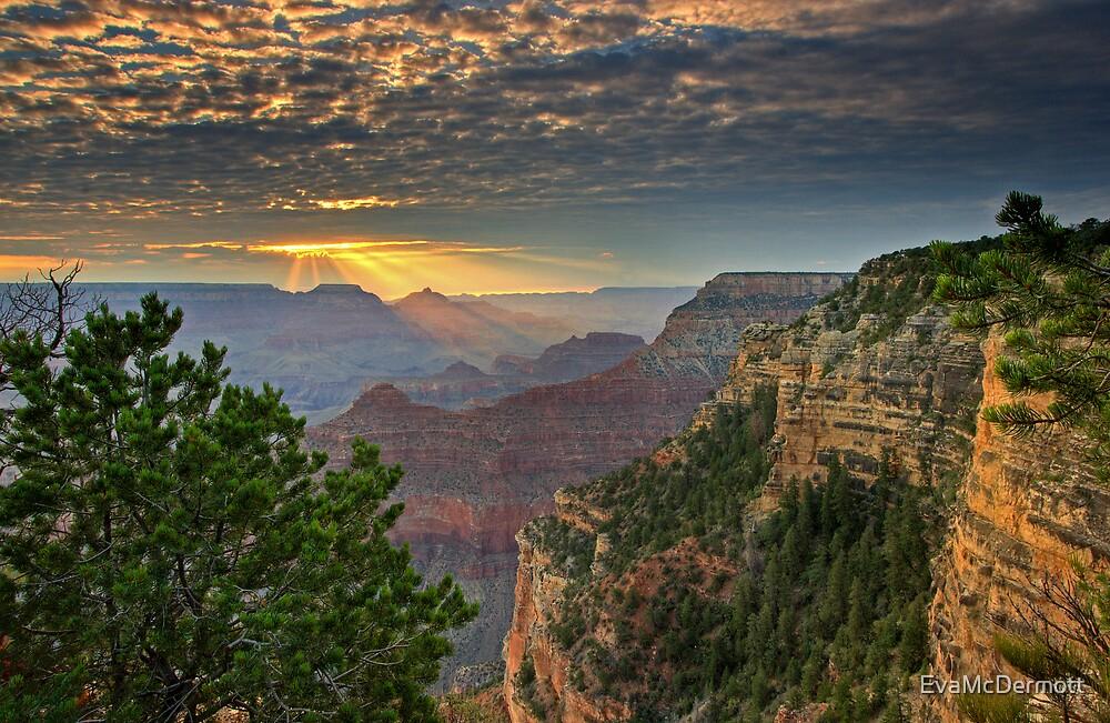 Grand Canyon Sunrise by EvaMcDermott