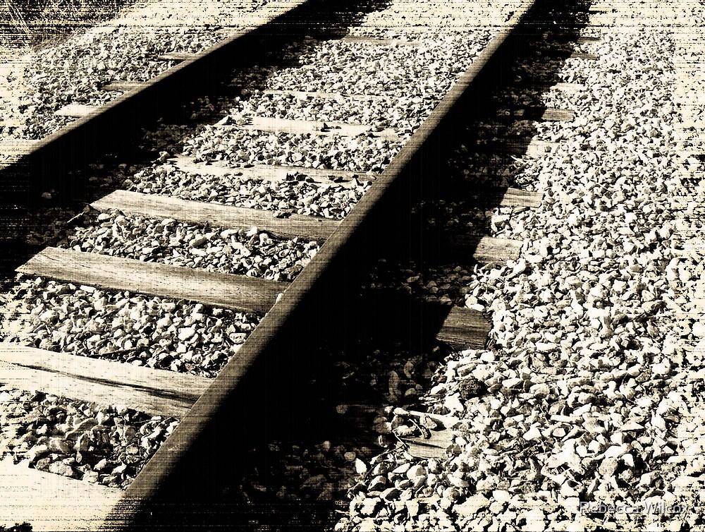Tracks by Rebecca Brann