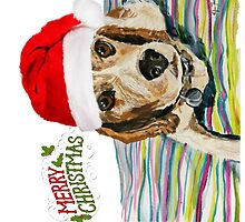 Merry Christmas from Charlie by Kylie Farrelly