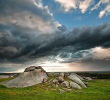 Dog Rocks by James Collier