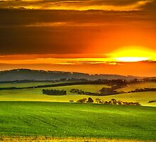 Barrabool Hills by James Collier