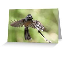 Grey Fantail ~ It's Simple Kid  Greeting Card