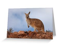 I am Australian ~ Euro Greeting Card