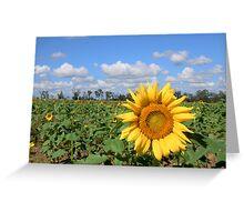 Sunny Hillside Greeting Card