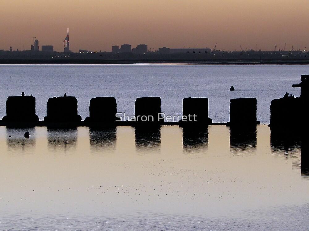 Sunset - 5 23-11-07 by Sharon Perrett