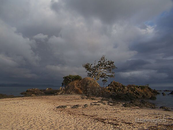 Storm on the Coromandel New Zealand by littleeagle5