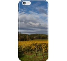 Russian River After the Storm iPhone Case/Skin