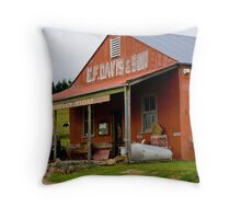 Ye Olde Produce Store Throw Pillow