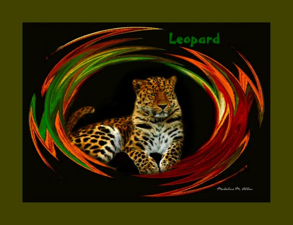 Leopard by Madeline M  Allen