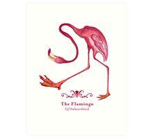 Flamingo of Awkwardness Art Print