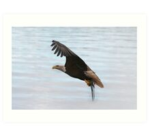 Eagle Over Blue & Pnk Art Print