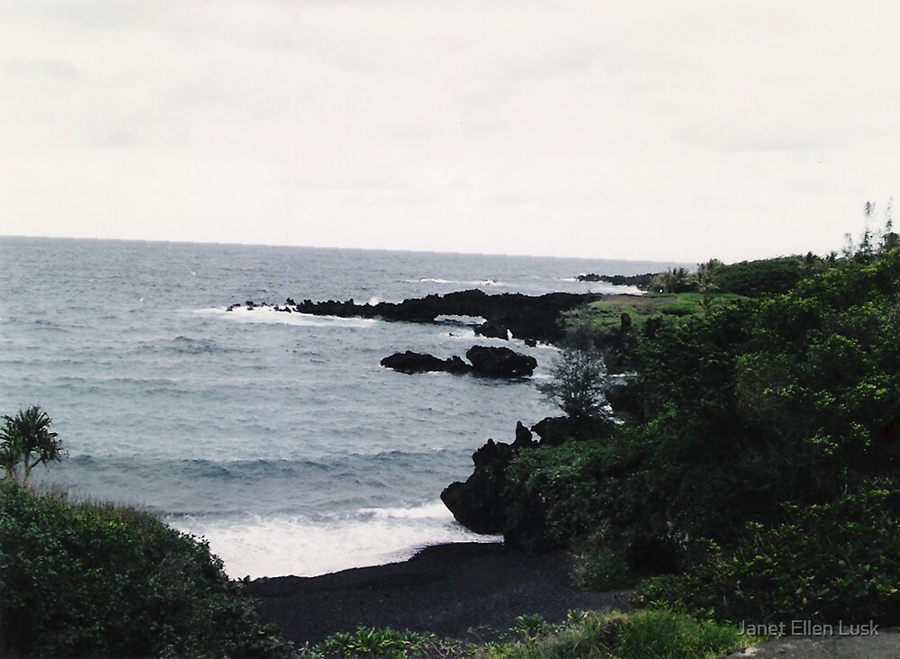 Cove on Maui by Janet Ellen Lusk