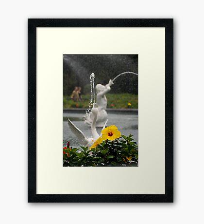Faountain At Forsyth Park Framed Print