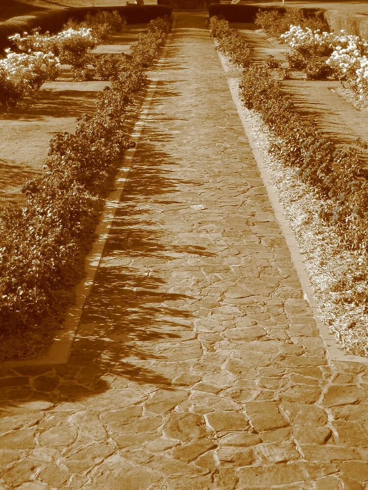 Garden Path by Joshua-marc Cane